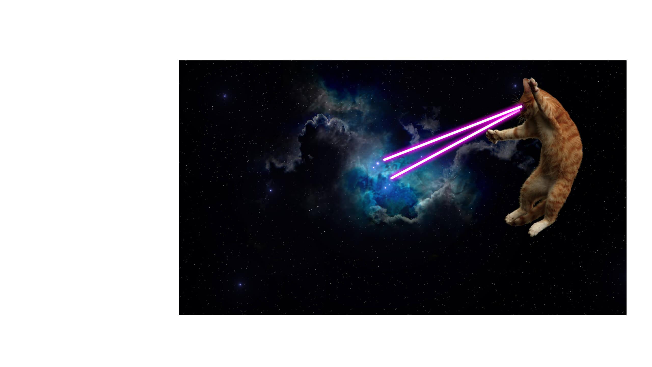 wirsindschoener_lasercat_1_2560x1440